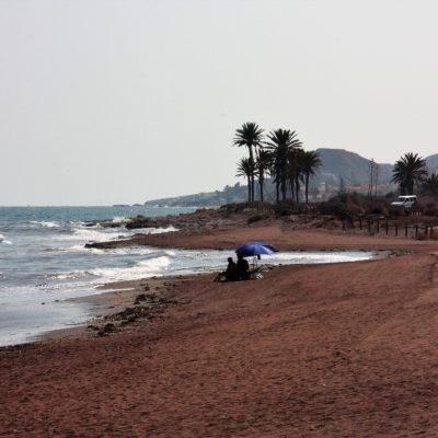 Playa Los Nardos